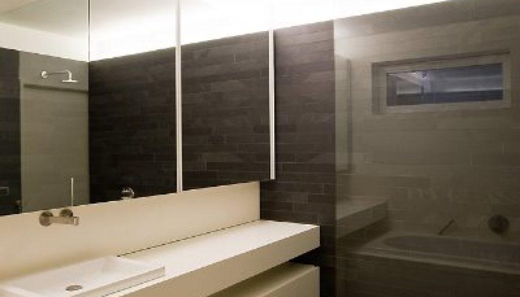 zicht lavabo en douche